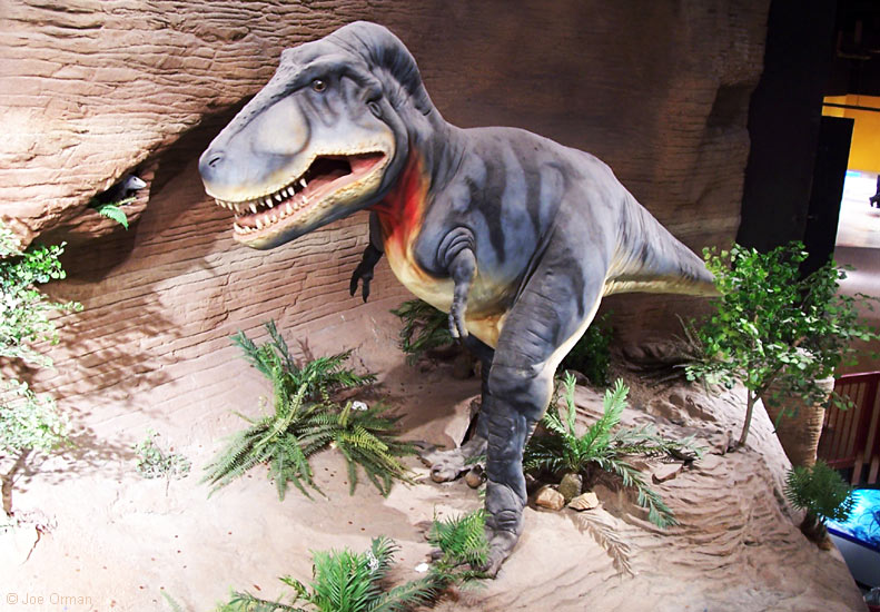 Dinosaur Exhibit Outside Two Medicine Center In Montana